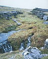 Sink holes, Pen-y-Ghent Gill - geograph.org.uk - 1517601.jpg