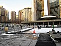 Skating at City Hall Toronto 2010.jpg