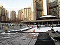 Skating at City Hall Toronto 2010.jpg