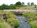 Skew Bridge - geograph.org.uk - 60485.jpg