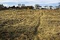 Skrunda - panoramio (5).jpg