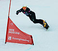 Snowboard LG FIS World Cup Moscow 2012 021.jpg
