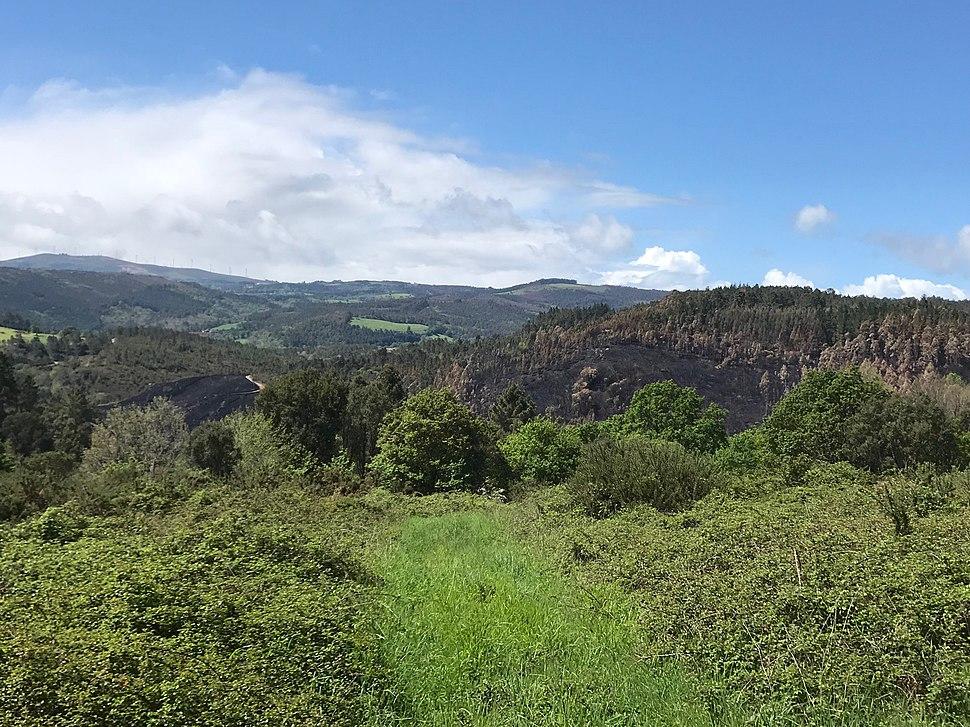 Sobreirais do Arnego, vista