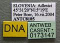 Solenopsis fugax casent0173147 label 1.jpg