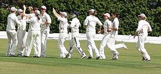 Somerset Women cricket team