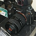Sony Alpha-700 img 1254.jpg