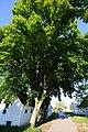 Spannberg, Linden am Quent, GF-075 (30).jpg