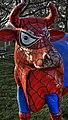 Spidermoo - geograph.org.uk - 1608836.jpg