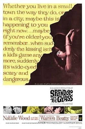 Splendor in the Grass - Theatrical release poster by Bill Gold