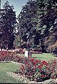 Stadtgarten Winterthur.JPG