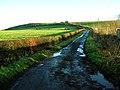 Steep Hill Near Underhills - geograph.org.uk - 297982.jpg
