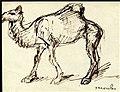 Steinlen - camel.jpg
