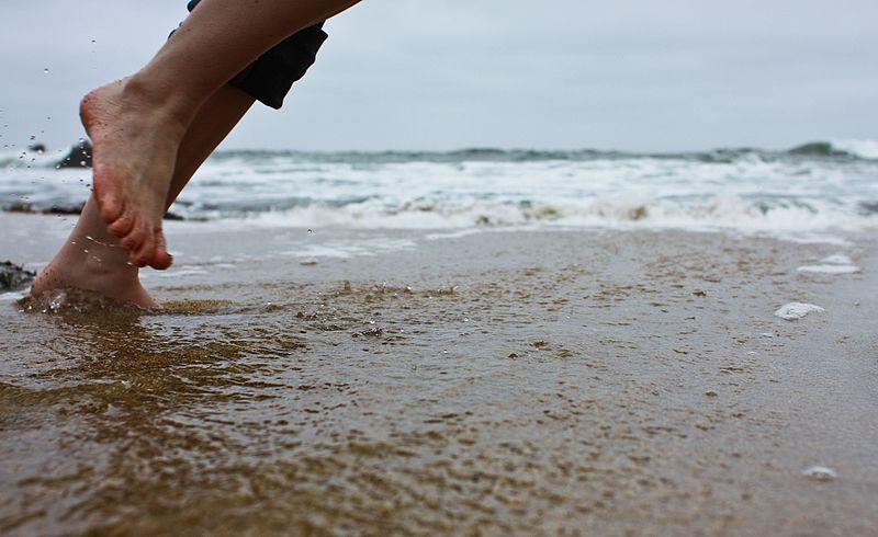 File:Step Across - Flickr - Joe Parks.jpg