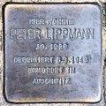 Stolperstein Pallasstr 5-6 (Schöb) Peter Lippmann.jpg
