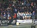 Straubing Tigers Fans.jpg