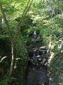 Stream in front of Nanzoin Temple in Sasaguri, Kasuya, Fukuoka (north).jpg