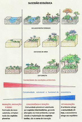 Dinâmica ambiental no brasildinâmica ambiental no mundo 7