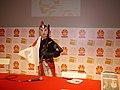 Sugi - Lucha Libre - Japan Expo 2011 - P1210486.jpg