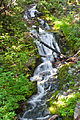 Summerland trail, mini-falls on the way.jpg