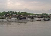Sundarbans-crosji.jpg