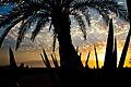 Sunset Cape Verde (4335468456).jpg