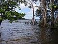 Suriname, Overbridge Resort - panoramio.jpg