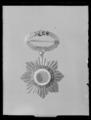 Sydamerikanskt ordenstecken - Livrustkammaren - 27856.tif