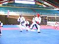 Taekwondo in hall.jpg