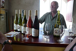 Tasting at a Cheverny cooperative in the Loire Valley.jpg