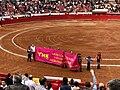 Tauromaquia Mexicana - Plaza Mexico.jpg