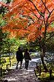 Tenryu-ji Temple Garden - panoramio.jpg