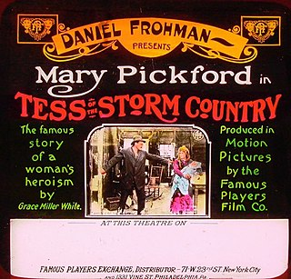 <i>Tess of the Storm Country</i> (1914 film) 1914 film by Edwin Stanton Porter