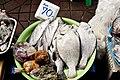 Thai Fish Market (Unsplash).jpg