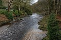 The Afon Ystwyth at Trawscoed - geograph.org.uk - 1771755.jpg