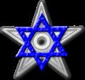 The Jewish Barnstar2.png