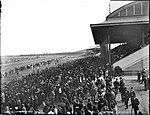 The Lawn, Randwick Racecourse (4903277113).jpg