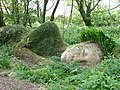 The Lost Gardens of Heligan - geograph.org.uk - 197947.jpg