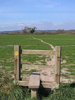 The Sandstone Trail near Tarporley - geograph.org.uk - 396260