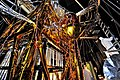 "The Webb Telescope's ""Golden Spider"" (8056998418).jpg"