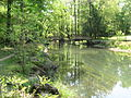 The grounds at Blue Hole Springs in Florida Caverns State Park.JPG