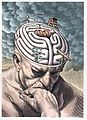 The gyri of the thinker's brain as a maze of choices in biom Wellcome L0027293.jpg
