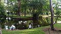 Thonburirompark1.jpg