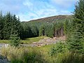Timber Extraction - geograph.org.uk - 534013.jpg