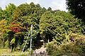 Tono Kizugawa Kyoto pref Japan17s3.jpg