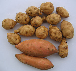 Topinambour patate.jpg