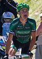 Tour de France 2012, voeckler op de Peyresourde (14869881745) (cropped).jpg