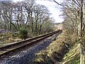 Trainline to Wick - geograph.org.uk - 704603.jpg