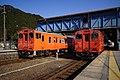 Trains at Ikuno Station.jpg