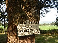 Tree 'digesting' sign - geograph.org.uk - 238455.jpg