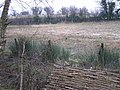 Tullyallen Field, Ulster American Folkpark - geograph.org.uk - 284080.jpg